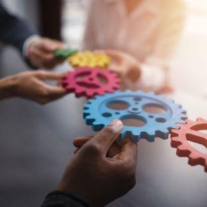 Artikelbild von Erfolgreich dank Teamwork – das musst du wissen